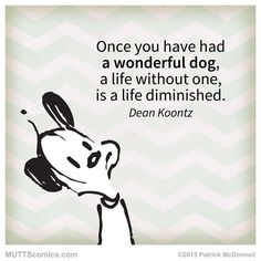 """""""Once you have had a wonderful dog, a life without one, is a life diminished."""" #MUTTScomics"""