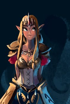 I still don't know how I feel about this game but I DO know how I feel about Zelda Warrior Princess.