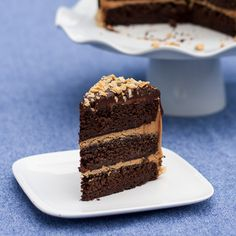 Peanut Butter Chocolate Cake | flourarrangements.org
