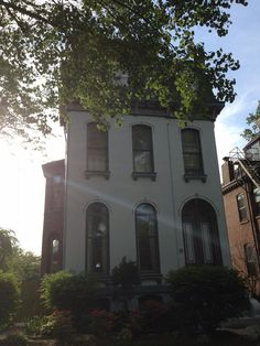 """Discovering the Early Days of a """"Painted Lady"""" 