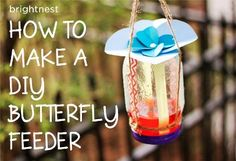 How To Make A DIY Butterfly Feeder | Health & Natural Living