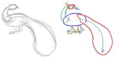 Image result for peacock drawing step by step