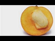 Gardening From Seeds : How to Plant a Mango Seed