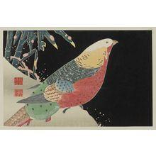 伊藤若冲: Golden Pheasant and Bamboo in Snow - ボストン美術館