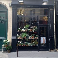 Best Paris plant and flower shops La boutique des Saints Peres I will go to all of these shops one day!
