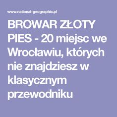 BROWAR ZŁOTY PIES - 20 miejsc we Wrocławiu, których nie znajdziesz w klasycznym przewodniku National Geographic