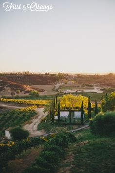 www.firstandorange.com  Wedding Temecula Winery California venue ideas