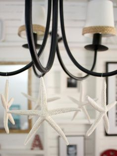 Create a coastal Christmas look by hanging lightweight, white pencil starfish from a chandelier. Secure floral wire hooks to the top of each with a small dab of hot glue. Photo by Layla Palmer.