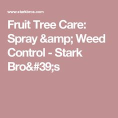 A properly executed schedule for maintaining fruit trees and their growing site is key to success. Pruning Fruit Trees, Organic Weed Control, Apricot Tree, Garden Weeds, Pest Control Services, Tree Care, Garden Guide, Companion Planting, Organic Gardening