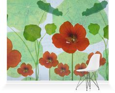 Murals of Nasturtium II by Nic Miller Photography (3000mm x 2400mm)   Shop   Surface View