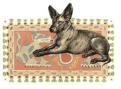 En el México antiguo al perro lo llamaban itzcuintli. Aún hoy a los ...