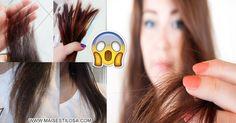 Como eliminar e recuperar pontas ressecadas, quebradas e espigadas do cabelo de forma definitiva e totalmente natural, com receitas caseiras incríveis.