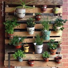 porch gardening with pallets... for those who don't have a big backyard!