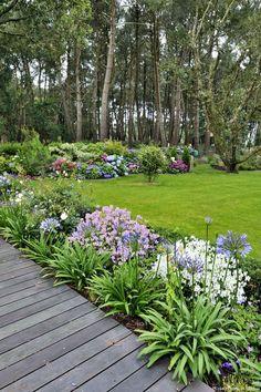 Devant les pins qui font rempart contre le vent et les regards, la haie variée est colorée en été par les hortensias, en harmonie avec les agapanthes au bord de la terrasse. Les némésies, blanches ou roses, tiennent très longtemps, elles se ressèment et donnent des fleurs presque toute l'année. Chantal les rabat de temps en temps pour les maintenir en boules.