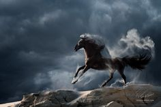Wuthering Heights by Vitaliy Sokol on 500px. Running horse with stormy clouds.