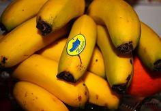 Banana da Madeira - yummiest bananas I've ever had