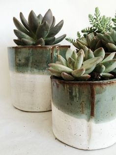 Cylinder Succulent Pot Set RESERVED Custom by arrowandsagestudio