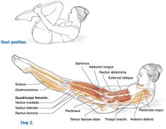Abdominal Work for Movement and Stabilization - Pilates Anatomy