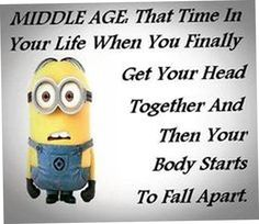 30 Today Funny Minions