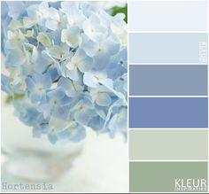 Bekijk de foto van MrsHooked - Kleurinspiratie met als titel HORTENSIA - Kleurenpalet zacht blauw en groen. en andere inspirerende plaatjes op Welke.nl.