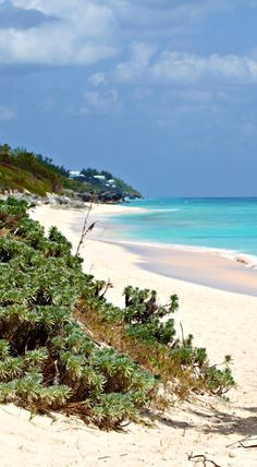 Bermuda Hotels - Amazing Deals on 98 Hotels in Bermuda Bermuda Hotels, Bermuda Beaches, View Map, Beatrix Potter, Another World, Beach Fun, Hotel Deals, Places Ive Been, Islands