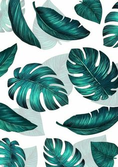 Ideas Wall Paper Phone Floral Desktop Wallpapers For 2019 Plant Wallpaper, Tropical Wallpaper, Summer Wallpaper, Iphone Background Wallpaper, Pastel Wallpaper, Aesthetic Iphone Wallpaper, Flower Wallpaper, Nature Wallpaper, Screen Wallpaper