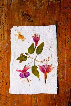 5 Tarjetas hechas con papel reciclado y material vegetal, acabadas con flores secas prensadas y aromáticas semillas de espliego 13x20 cm