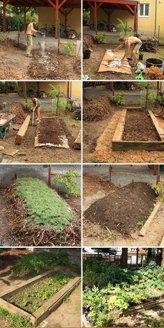 Urban Permaculture Transformation 22