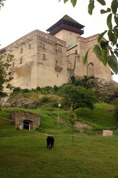 Lost in Slovakia Castle Ruins, Castle House, Architecture Old, Historical Architecture, Bratislava, Voyager Loin, Central And Eastern Europe, Heart Of Europe, Famous Castles