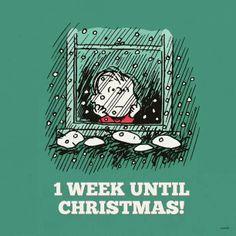 Una semana para navidad...