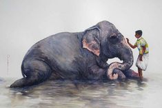 Indian Artist, Paintings, Painting Art, Elephant, Migraine, Composition, Animals, Artists, Color
