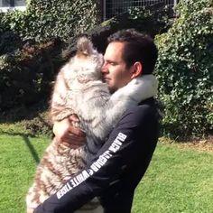 Let me hug you human!