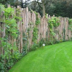 Fence Design, Garden Design, Cerca Natural, Rustic Fence, Garden Screening, Fence Landscaping, Garden Structures, Outdoor Structures, Garden Fencing