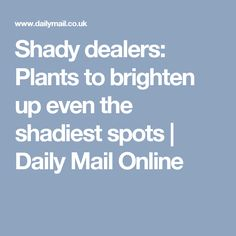 Shady dealers: Plants to brighten up even the shadiest spots | Daily Mail Online