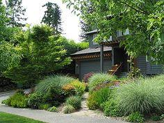Textural Garden with Fall Interest - Robinson Landscape Design Portfolio