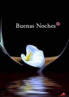 Pin by gladys rodriguez on buenas noches ночь, цитаты, цитат Night Messages, Good Night Wishes, Morning Wish, Sweet Dreams, Pictures, Life, Butterfly Felt, Assalamualaikum Image, Fat Humor