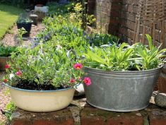 I spent hours over the weekend potting up all my plants and giving the garden a little bit of my attention. But it is this grouping of plants that I love best. Galvanized Planters, Garden Planters, Herb Garden, Container Gardening, Gardening Tips, House Front Porch, Rustic Gardens, Garden Gates, Planter Boxes