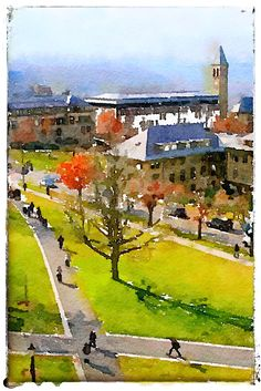 44 Best Cornell University Oil Paintings and Watercolors images in