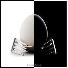 Alex Watanabe: An Eggcellent display in lighting - DIY Photography