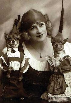 These 13 Vintage Dogs In Costume Prove Your Great Grandparents Had a Sense of Humor These vintage dog photos show the best in dog apparel from past decades. Dogs in lederhosen and dresses, you can't deny the cuteness! Chihuahua Clothes, Chihuahua Love, Vintage Circus, Vintage Dog, Vintage Ladies, Vintage Photographs, Vintage Photos, Funny Vintage Pictures, Funny Images