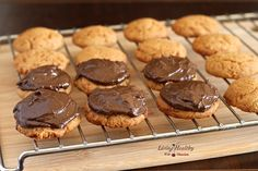 Almond Cookies Topped With Chocolate Avocado Fudge Frosting