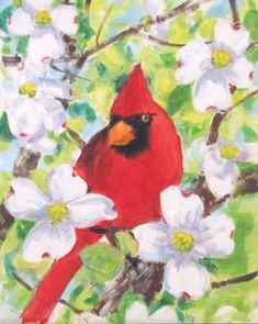 Art Student Academy - M Theresa Brown & Stephen Filarsky - Workshops Lessons Seminars - Cardinal in Snow - Cardinal in a Dogwood Wake Forest Nc, Forest Art, Bird Pictures, Cardinals, Workshop, Amp, Birds, Student, Snow