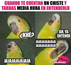 Memes As Creative Mind Prods – Viral Gossip Funny V, Haha Funny, Funny Posts, Funny Spanish Memes, Spanish Humor, Mexican Memes, Funny Quotes, Funny Memes, Funny Questions