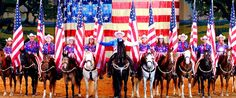 Dolly Parton's Dixie Stampede Dinner Attraction is an extraordinary dinner show with thirty-two magnificent horses and a cast of top-notch riders.