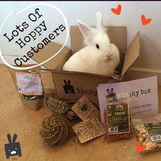 We've had lots of hoppy customers :) Treat Your #Bunny Or #Piggie To Januarys #BunnyBox www.getbunnybox.com/shop
