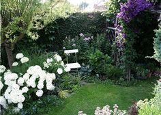 Líbí se Vám moje zahrada?  Děkuji za Váš hlas ♥