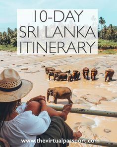 My Complete Sri Lanka Itinerary — The Virtual Passport Dream Big Travel More // Dream Big Live Tiny // Things to Do in Sri Lanka // Places to See in Sri Lanka // Must Do in Sri Lanka Sri Lanka Destinations, Sri Lanka Itinerary, Honeymoon Destinations, Romantic Vacations, Romantic Travel, Asia Travel, Solo Travel, Cool Places To Visit, Places To Travel