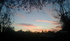 #autumn #otoño #atardecer #chile #huilquilemu #beautifullcolors #color #wonderfull #planeta #campo #fotografia #travel #happyday http://tipsrazzi.com/ipost/1519195636283832043/?code=BUVRGHVBXbr