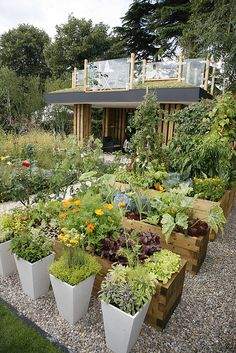 raised bed gardening in pots & containers at the Hampton Court flower show - photo by DavidQuick, via Flickr