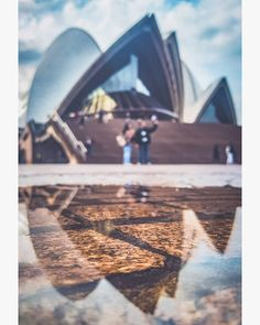 When you work in a building that thousands of people photograph every day, sometimes it's hard to find unique perspectives. But it's fun to… Hard To Find, You Working, Amazing Photography, Opera House, Perspective, Building, Unique, People, Fun